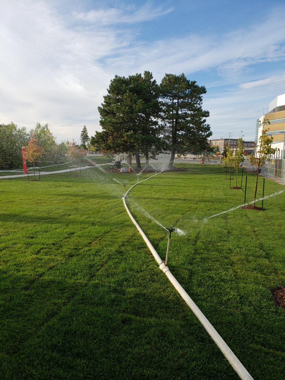view of water spraying in a garden
